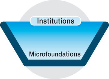 "Research Network ""Microfoundations of Institutions"""