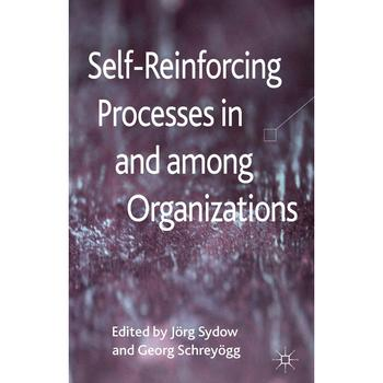 self-reinforcing processes_schreyögg,sydow